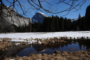 Yosemite, Half Dome Photo - Lesley Rochat
