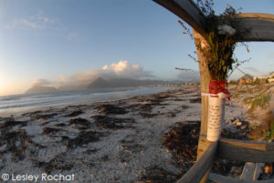 Lesley Rochat Photography - Whale Ceremony for 55 beached whales in Kommetjie
