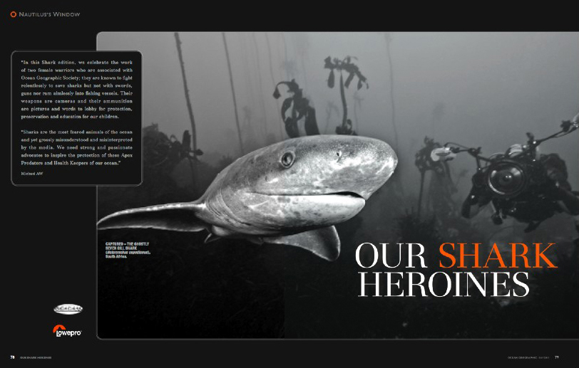 Lesley Rochat is shark heroine - Ocean Geographic Magazine