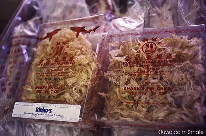 Shark Fin Packet Food
