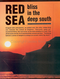 Red Sea Bliss - By Lesley Rochat