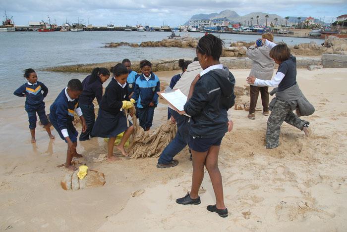 International Coastal Cleanup at SOS Shark Centre