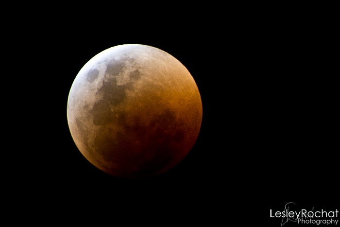 Lesley Rochat Photography - Moon Eclipse