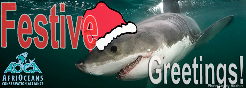 AfriOceans Festive Greetings 2011