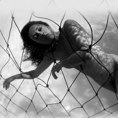 Lesley Rochat photography shark net