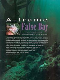 A-frame_False Bay - By Lesley Rochat