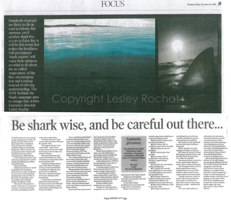 Be shark wise - Lesley Rochat