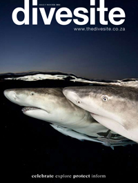 Divesite Magazine - Publications by Lesely Rochat