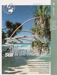 Still Waters - Lesley Rochat